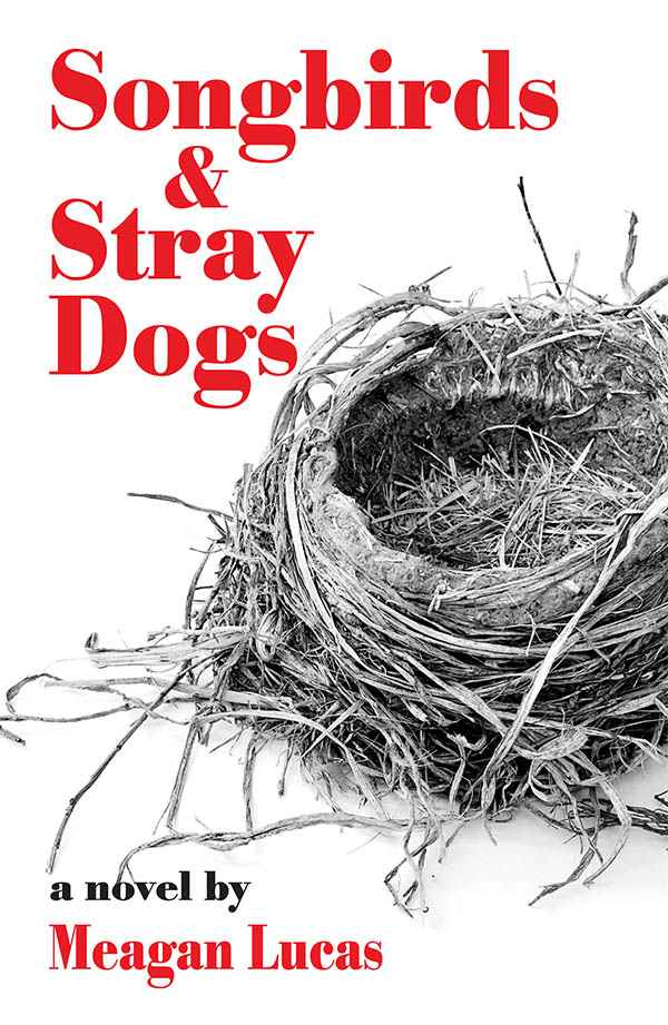 Review of Meagan Lucas's southern novel, SONGBIRDS & STRAY DOGS