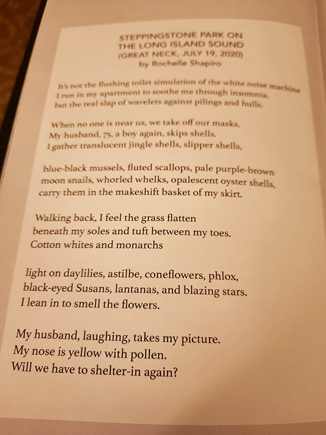 Patchwork Lit published a poem from my Pandemic Diary series